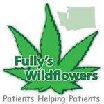 Fullys Wildflowers